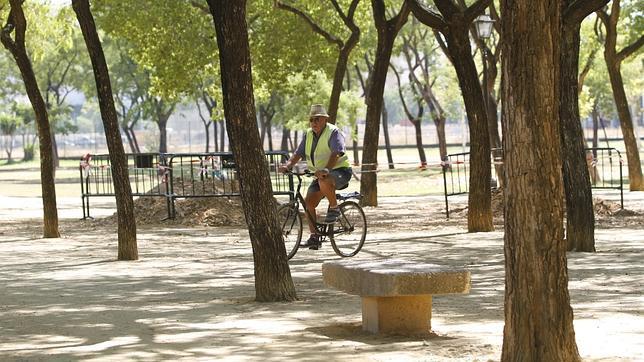 Obras en uno de los paseos del parque Amate