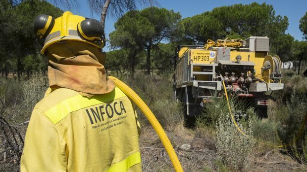 Un agente del Infoca trabajando sobre el terreno