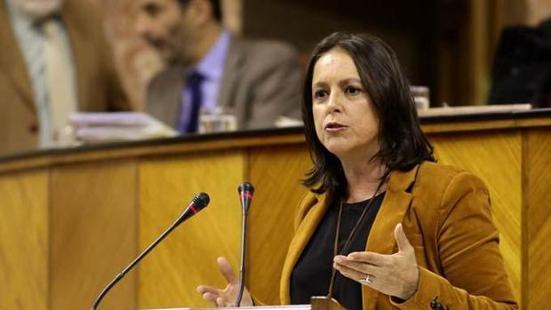 Lina García, durante una intervención en el Parlamento de Andalucía