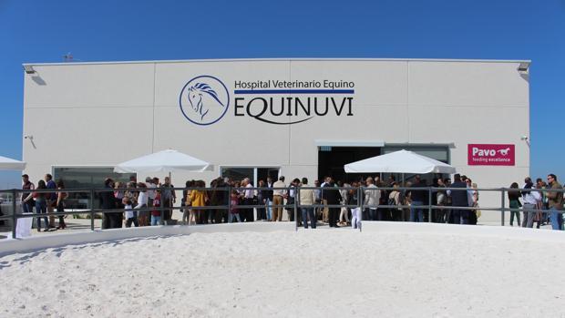 Vista general del hospital veterinario Equinuvi