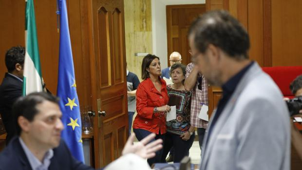 Ambrosio, a su entrada al Pleno