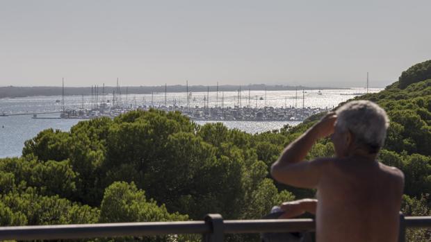 Vista de Nueva Umbría desde uno de los miradores entre El Portil y El Rompido