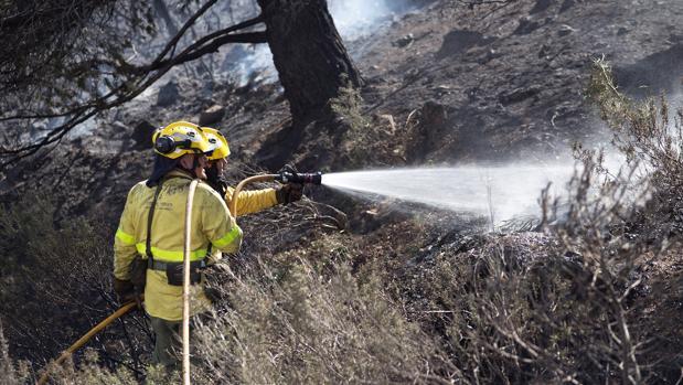 Efectivos del Infoca trabajan en la extinción de un incendio forestal declarado esta mañana en el paraje del Túnel de la Gorgoracha