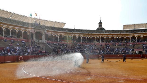 La Plaza de Toros de Sevilla comienza este domingo con lad novilladas de abono
