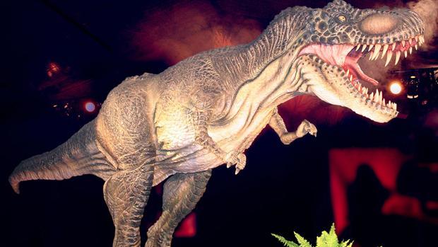 El Tiranousaurio Rex es la joya de la corona de la exposición