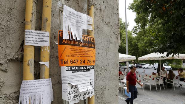 El Banco de España ve en la actual escalada de precios del alquiler motivos sociológicos y económicos