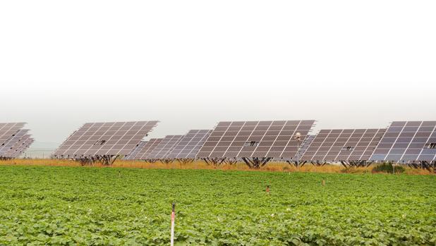 La Junta de Andalucía recibe 431 solicitudes para instalar parques fotovoltaicos