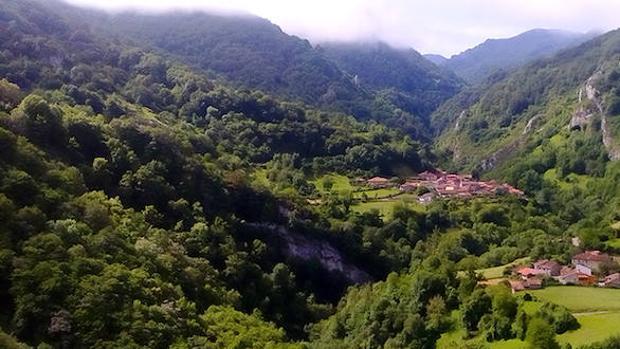 Ponga, en Asturias, declarada nueva Reserva de la Biosfera