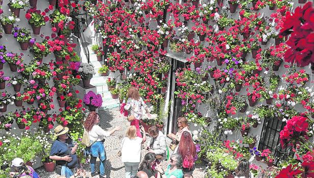 La fiesta de los patios de Córdoba tendrá lugar de 6 al 19 de mayo