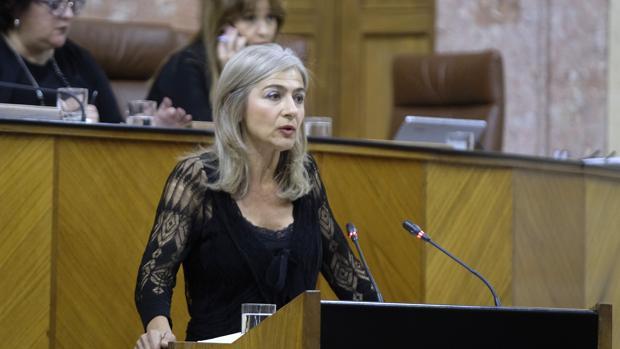 Patricia del Pozo, consejera de Cultura