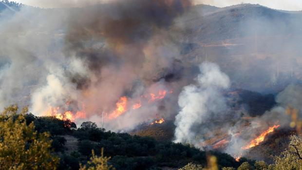 Incendio forestal en El Madroño