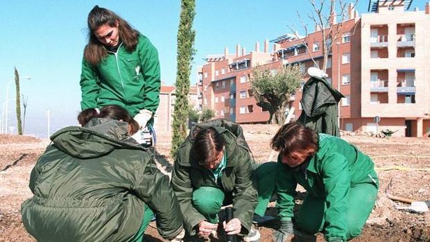 Uno de los grados demandados es el de Técnico en Jardinería y Floristería