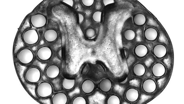 El implante con las nuevas células