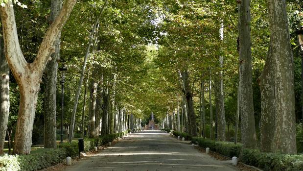 Uno de los senderos del Parque de María Luisa