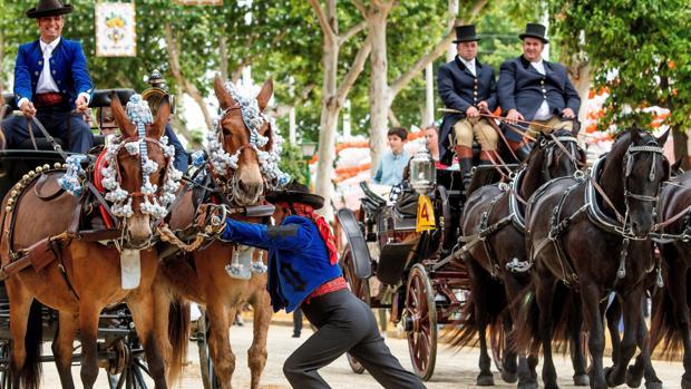 Varios coches de caballos, en el Real de la Feria